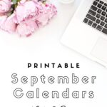 Looking for a cute, free printable September 2020 calendar? Here are some you might like! Choose your favorite from the pretty calendar designs!
