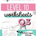 Q3 Level 10 Life - Assess your life with the quarter three wheel of life Pinterest Image